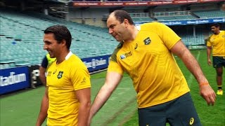 Rugby HQ looks at the Wallabies jersey