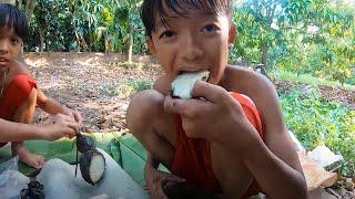 Thử Thách Sinh Tồn & Săn Ăn Trộm Trong Vườn Xoài