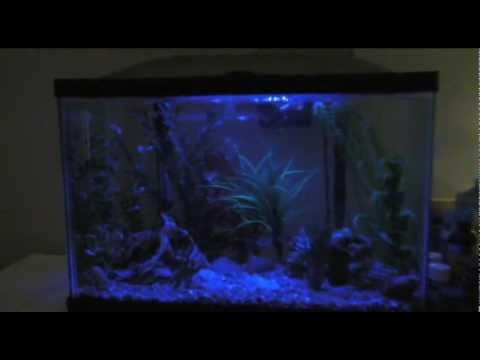 Marineland 20 gallon led aquarium with night light moon light marineland 20 gallon led aquarium with night light moon light mozeypictures Image collections