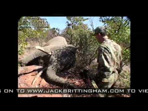 Jack Brittingham's Tanzania Adventures – Elephant Archery Hunt