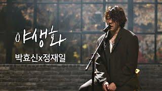 [풀버전] 박효신(Park hyo shin)x정재일(Jung jae il), 한층 깊어진 감성 ′야생화′♪ 너의 노래는(Your Song) 1회