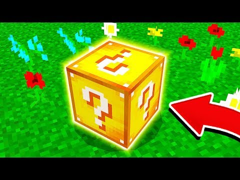 WHAT'S INSIDE THIS MINECRAFT BLOCK?!