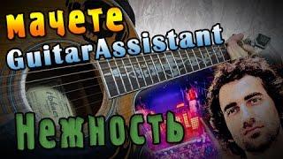 МАЧЕТЕ - Нежность (Урок под гитару)