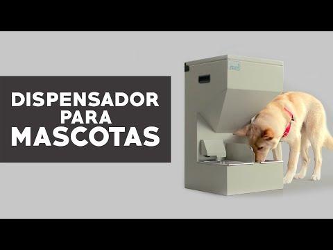 Dispensador de agua y alimentos para mascotas sodimac for Dispensador de comida para perros