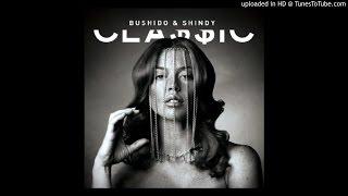 Bushido & Shindy - Brot Brechen x Play Hard (Remix)