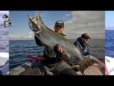 ловля лосося на троллинг видео