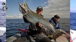 Озерный лосось 8,9 кг Trolling Centrum Russia.