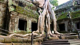 Angkor: Ancient Mega City in the Jungle