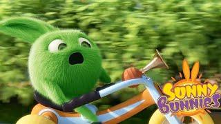 Солнечно Зайчики - Сделай сам |  Забавные мультфильмы для детей | WildBrain