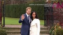 Harryn ja Meghanin kuninkaalliset häät | 19.5. klo 13.00 | AVA