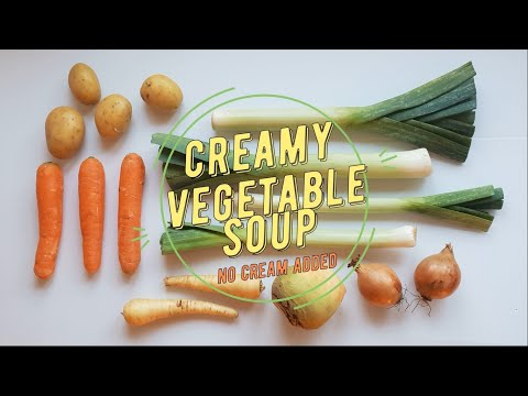 Homemade Creamy Vegetable SOUP (quick And Easy; No Cream Added) *in Stop Motion*