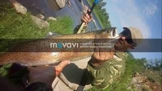 рыбалка  на реке Ингода 2018 хариус ленок