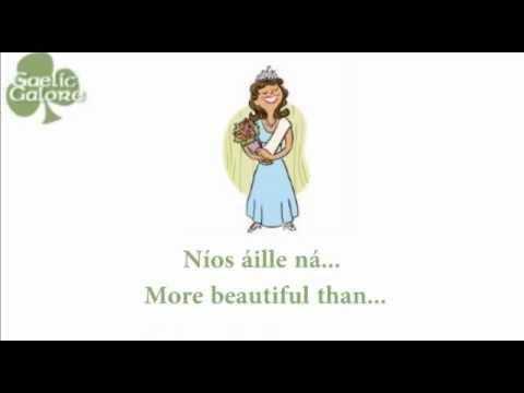 how to learn irish gaelic