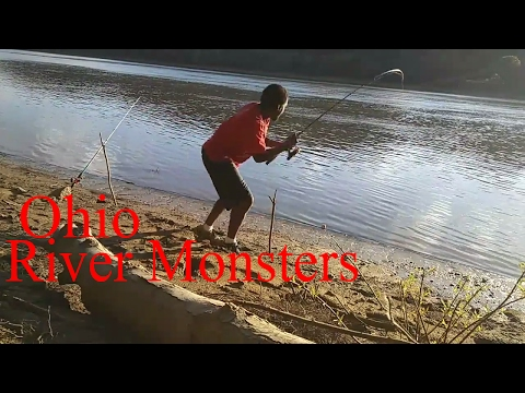 Fishing the Ohio River Riverview Park Louisville ky (Fishing Report 6-7-2017)