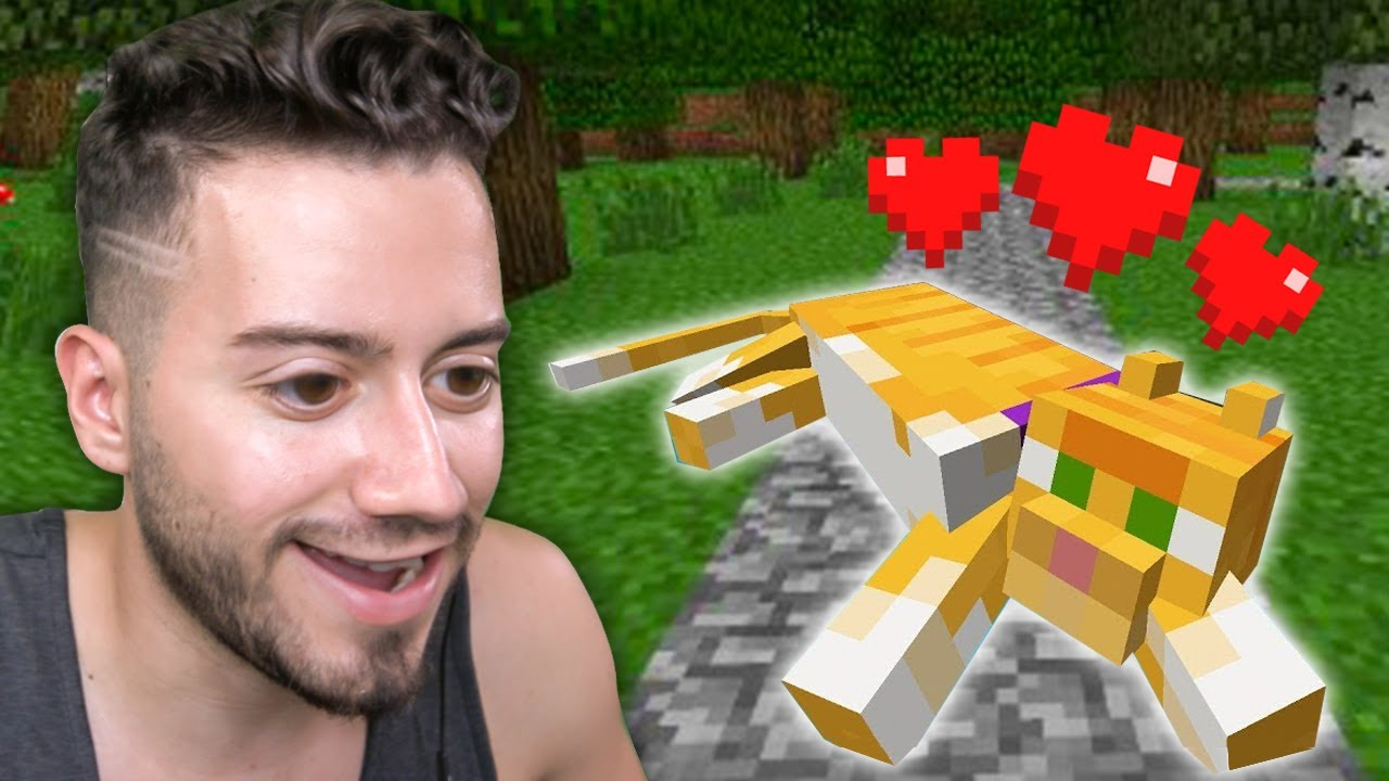 YENİ KEDİ BULDUM (Yıl 2013) Minecraft - Part 3