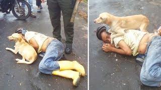 Er lag bewusstlos auf der Strasse! Wie sein Hund darauf reagierte macht uns sprachlos!