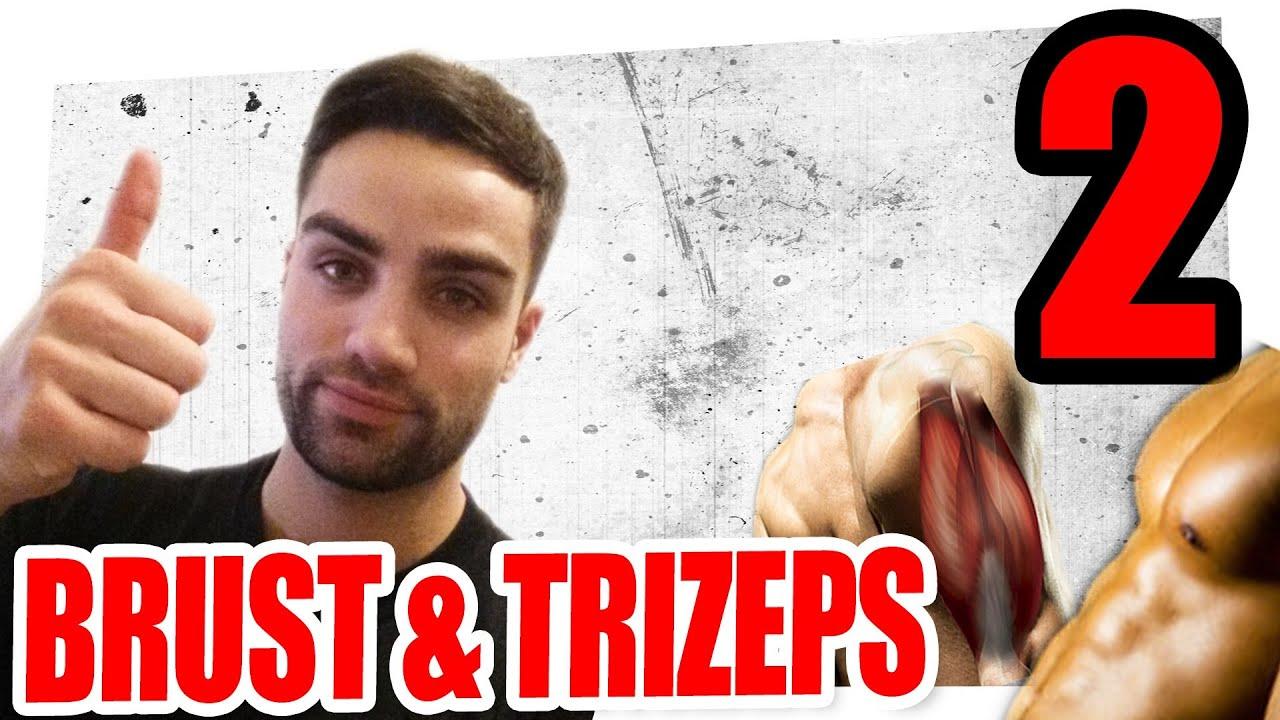 Trainingsplan 3er Split - Einheit 2 - Brust &Trizeps