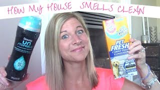 Products I Use To Keep My House Smelling CLEAN & FRESH | Pet & Kid Household