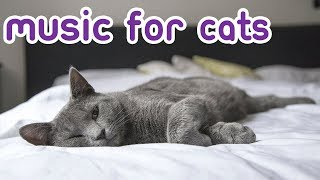 Songs for Cats! Combat Anxiety with Calming Music for Cats! NEW 2019!