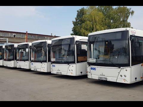 В Рязань привезли 40 автобусов