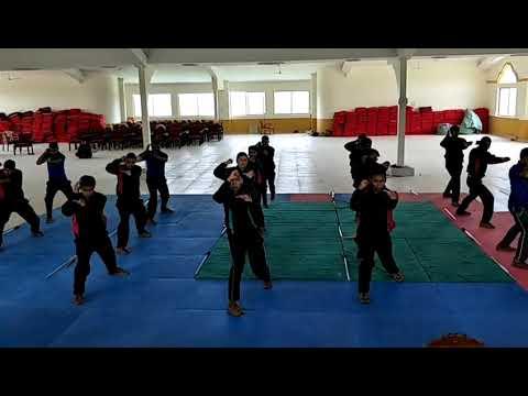 Police Defensive Combative