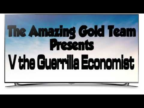 V Guerrilla Economist Youtube V the Guerrilla Econom...