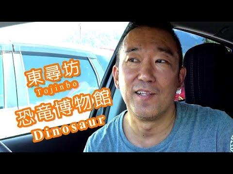 福井旅行1「北陸_九州旅行DAY1」東尋坊と芦原温泉と恐竜博物館