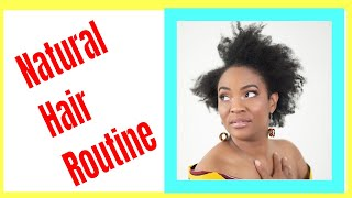 Natural Hair Routine - How To Finger Detangle 4C Hair - ZAMBIAN  YOUTUBER