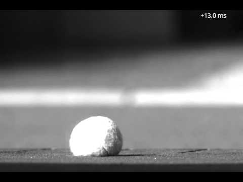 Ball bouncing in slow motion: Tennis ball