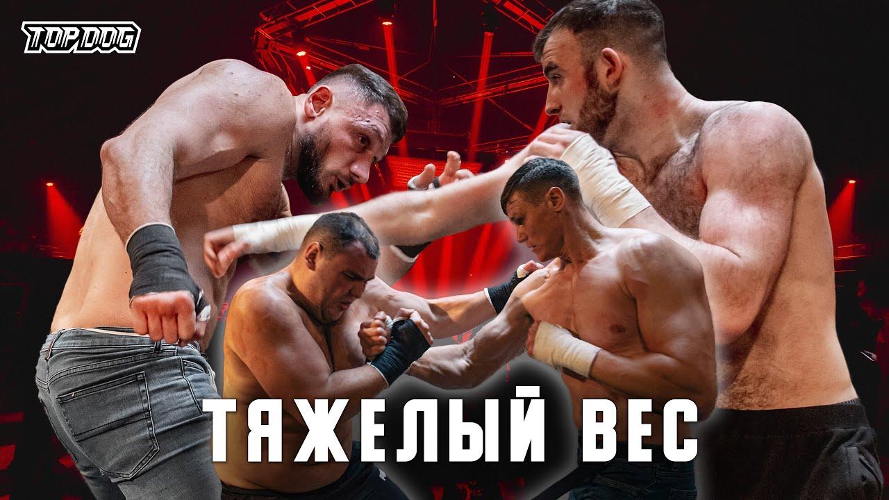 Автомат Гаджи - Зубр, Павел Шульский - Отличник | TDFC7 | Тяжелый вес