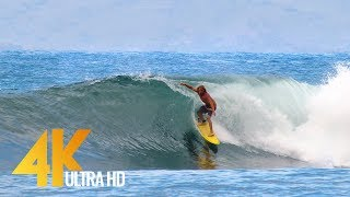Fearless Surfers of Honolua Bay - Maui Island, Hawaii - 4K Relaxation video with Ocean Sounds