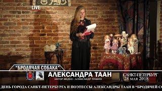 """Санкт-Петербург - День города. """"Бродячая собака"""" Александра Таан - Вступительное слово"""