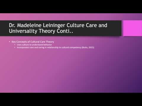 Model, Theory and Personal Philosophy Appliedin Advanced Nursing Practice