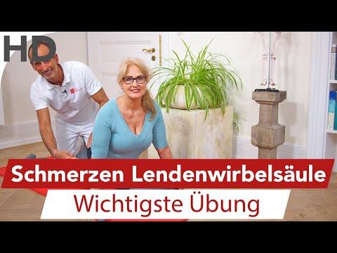 LWS Schmerzen Übungen // Rückenschmerzen, Rückenübungen, Lendenwirbelsäule, Faszien