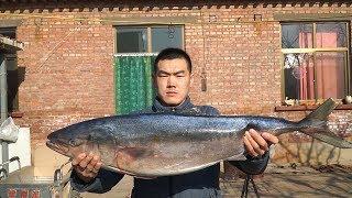 【食味阿远】阿远花210块买了条20斤的鲅鱼,茄汁炖2小时,肉厚入味儿,过瘾   Shi Wei A Yuan