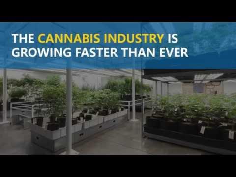 Follow the money: Big Pharma & Alcohol lobby against legalization