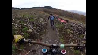 Bike Park Wales, Sixtapod to Willy Waver, 3.9km blue run.