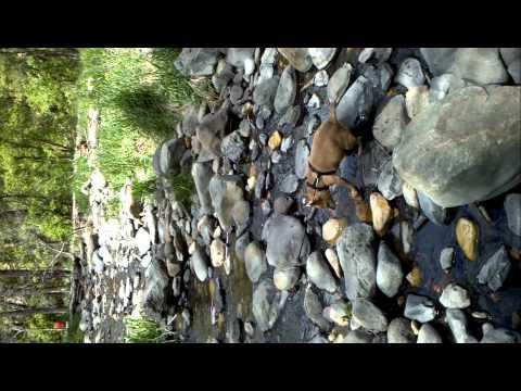 West Texas Kayak Fishing Oak Creek Reservoir from YouTube · High Definition · Duration:  1 minutes 51 seconds  · 1.000+ views · uploaded on 01.06.2016 · uploaded by Yakin Junkie