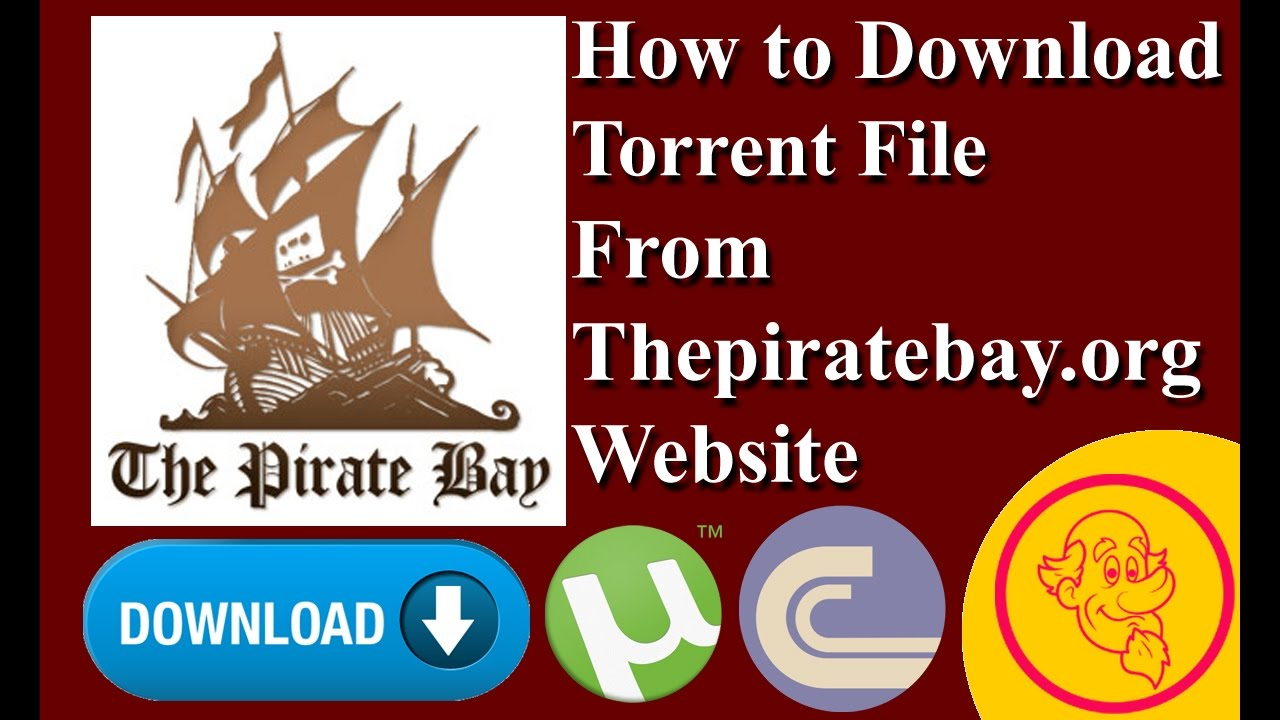 The pirate bay alternatives and similar websites and apps.