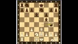 Уроки шахмат   Гамбит Дамиано 2