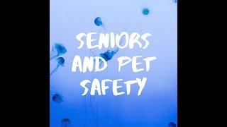 Seniors and Pet Safety | Superhero Lifestyle
