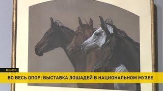 Выставка лошадей открывается в Национальном художественном музее