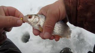 Рыбалка в глухозимье при снегопаде ловля голавликов и плотвы отчет за 9 января