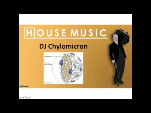 House Mix  - DJ Chylomicron