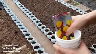 как сделать ограждение для клумбы из пластиковых бутылок