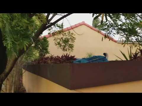 CALIFORNIA CLUB 1X60 NE 203rd Ter North Miami Beach, FL 33179