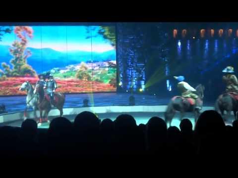 Ледовое шоу в Лужниках 3 2013