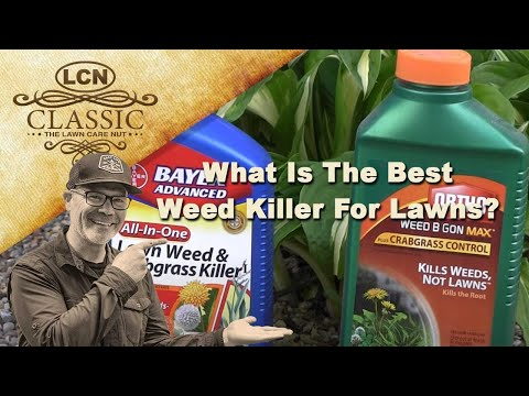 What Is The Best Weed Killer For Lawns | Best Weed Control