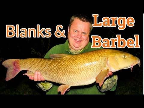 Barbel Fishing - River Kennet (Video 129)