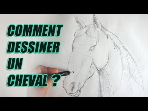 Comment dessiner un cheval partie1 youtube - Cheval facile a dessiner ...